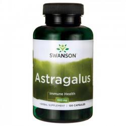 astralagus